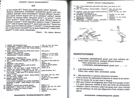 pagina239_4